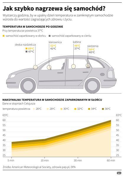 Jak szybko nagrzewa się samochód? (Maria Samczuk/PAP)
